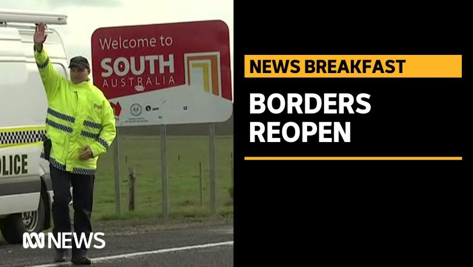 South Australia border reopens to NSW | ABC News