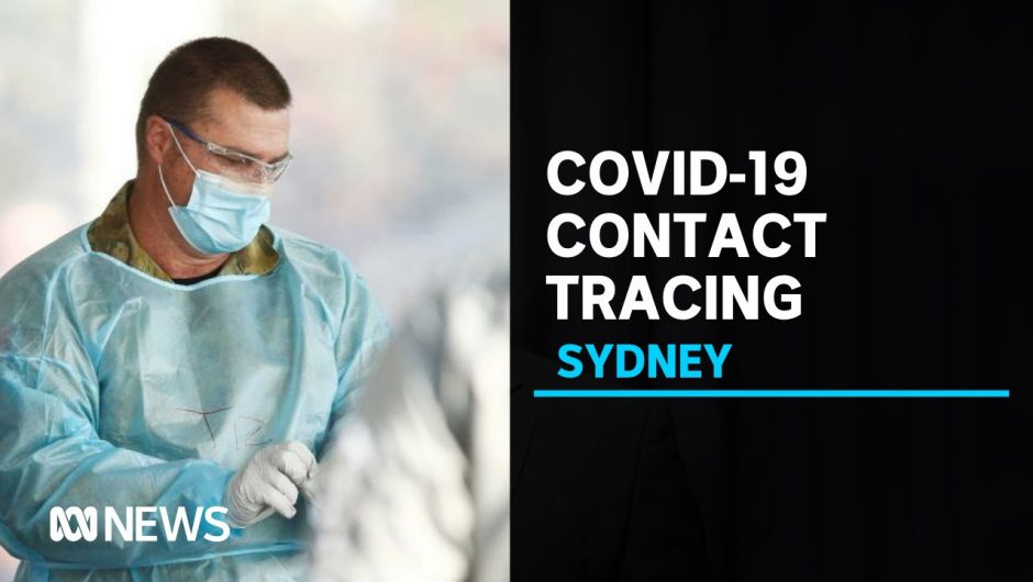 Tracing underway in Sydney for taxi passengers exposed to COVID-19   ABC News