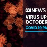 Coronavirus update Oct 8 –  Qld/NSW border opening in jeopardy as SA borders loosen | ABC News