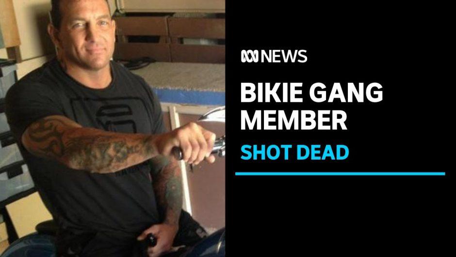 Finks bikie Shane Bowden shot dead on the Gold Coast | ABC News