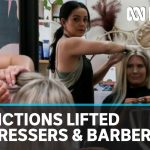 Hairdressers urge PM to stand them down amid coronavirus pandemic | ABC News