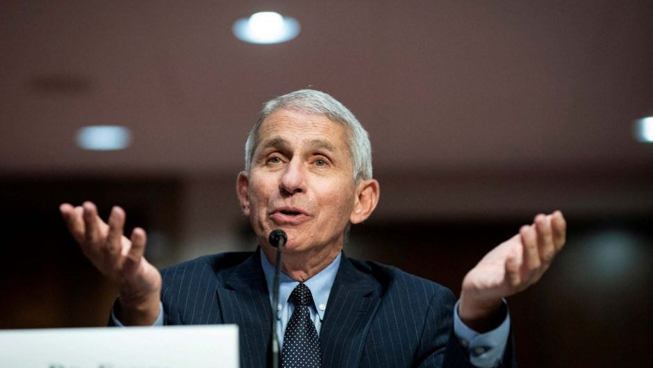 US expert Dr Anthony Fauci claims coronavirus vaccine could be declared safe by December