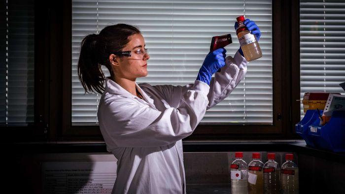 COVID-19 sewage testing helping guide coronavirus testing as Australia tries to stop the spread