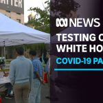COVID-19 testing centre outside White House not a stunt, says DC Senate rep | ABC News