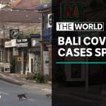 Bali coronavirus: Record high numbers for five straight days | The World