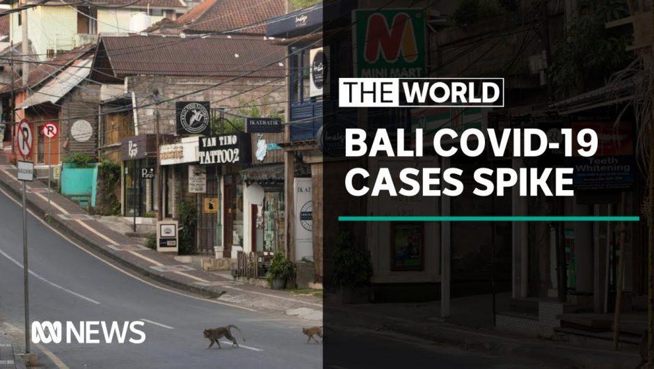 Bali coronavirus: Record high numbers for five straight days | The World