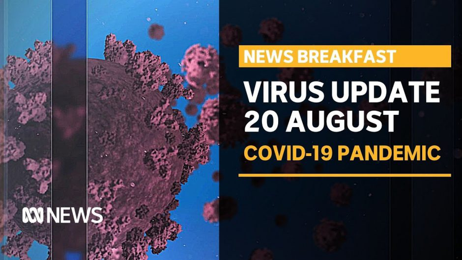 Coronavirus update 20 August – Vic's hard lockdown working, but taking a mental toll | ABC News