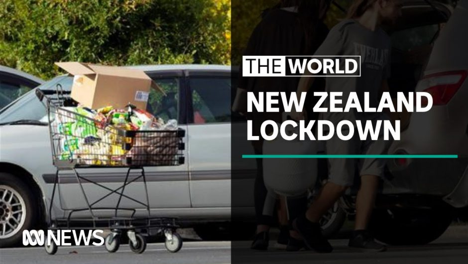 Annoyed New Zealanders head back into second coronavirus lockdown | The World