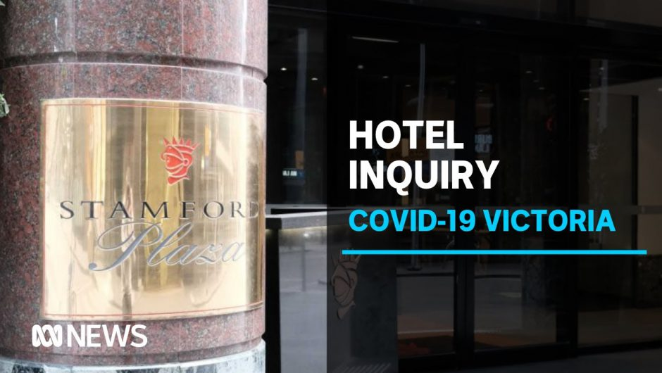 Sutton had no 'oversight' of COVID-19 infection control in Vic. hotel quarantine program | ABC News