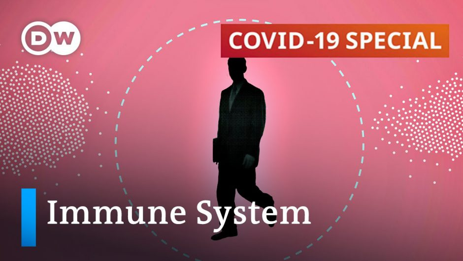Does immune protection play any part in COVID-19 severity? | COVID-19 Special