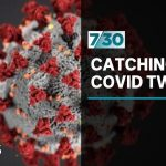 Can you catch COVID-19 twice? Dr Norman Swan investigates | 7.30