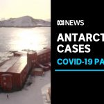 Coronavirus cases recorded in Antarctica at Chilean research station | ABC News