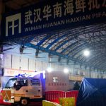WHO team to start Wuhan COVID investigation in market, lab   Coronavirus pandemic News