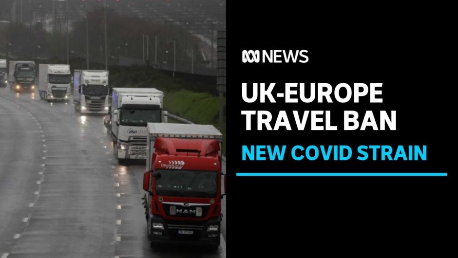UK coronavirus: Trucks queue at ports in England as France halts freight | ABC News