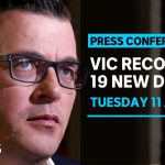 Victoria records 331 new cases and 19 COVID-19 deaths overnight | ABC News