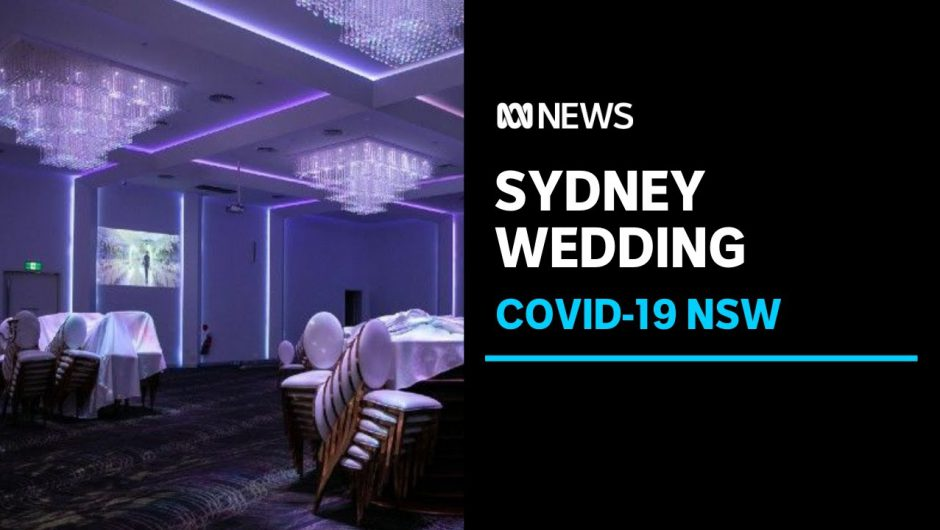 Wedding company fined for COVID-19 breach after hundreds attend Sydney wedding reception | ABC News