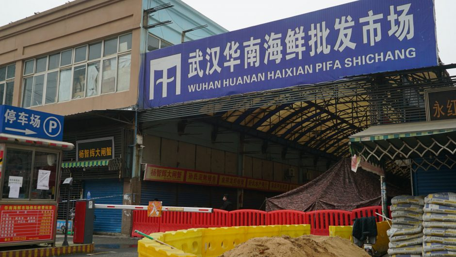 China's COVID-19 outbreak and lockdown of Wuhan