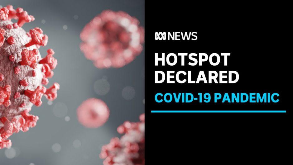 NT Government declares Sydney's Northern Beaches area a coronavirus hotspot | ABC News