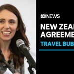 New Zealand offers travel bubble with Australia if coronavirus cases stay low | ABC News