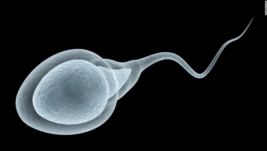 Male fertility: Covid-19 may impact sperm, a study finds, but experts urge caution about new evidence