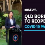Queensland to allow Sydney visitors from Dec 1 as coronavirus border restrictions relaxed | ABC News