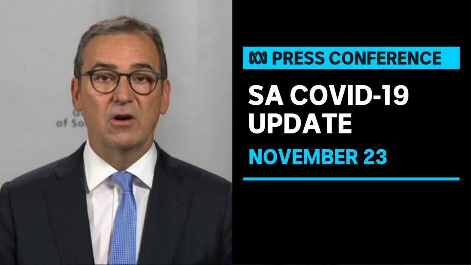 South Australian Premier Steven Marshall giving a coronavirus update  ABC News