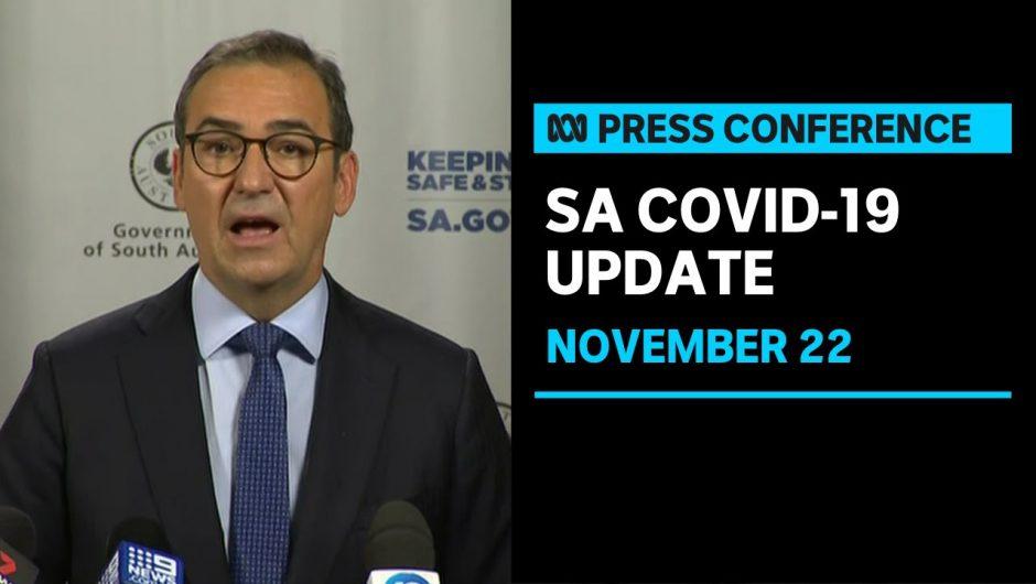 South Australia dodged coronavirus 'catastrophe', Premier Steven Marshall says | ABC News