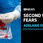 SPECIAL REPORT: South Australia on the brink of second wave of coronavirus | ABC News