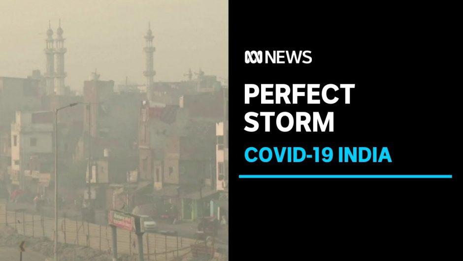 New Delhi doctors fear catastrophe as pollution exacerbates coronavirus infections surge | ABC News