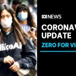 Coronavirus: Victoria celebrates one week of no cases, no deaths, NSW also records zero | ABC News