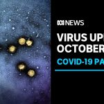 Coronavirus update, Oct 25: Cluster concerns delay easing of restriction in Melbourne | ABC News