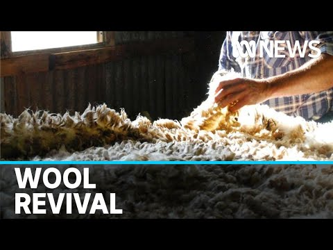 COVID-19 pandemic driving agricultural processing back to Australian shores  | ABC News