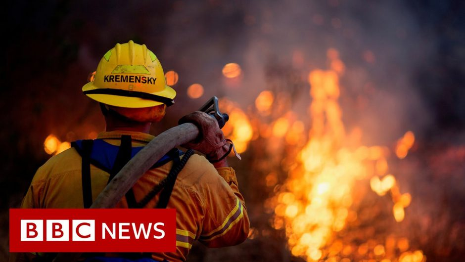 Climate Change: How much did it cost US economy in 2020? – BBC News