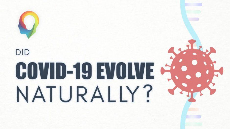 Did COVID-19 Evolve Naturally?