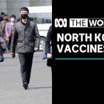 More than a million coronavirus vaccines en route to North Korea  The World