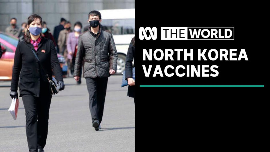 More than a million coronavirus vaccines en route to North Korea |The World