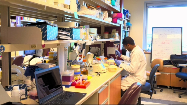 COVID-19 vaccine developed at University of Alberta proceeding to clinical trials