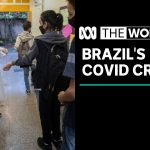 "Coronavirus pushes Brazil's healthcare system ""to breaking point"" 