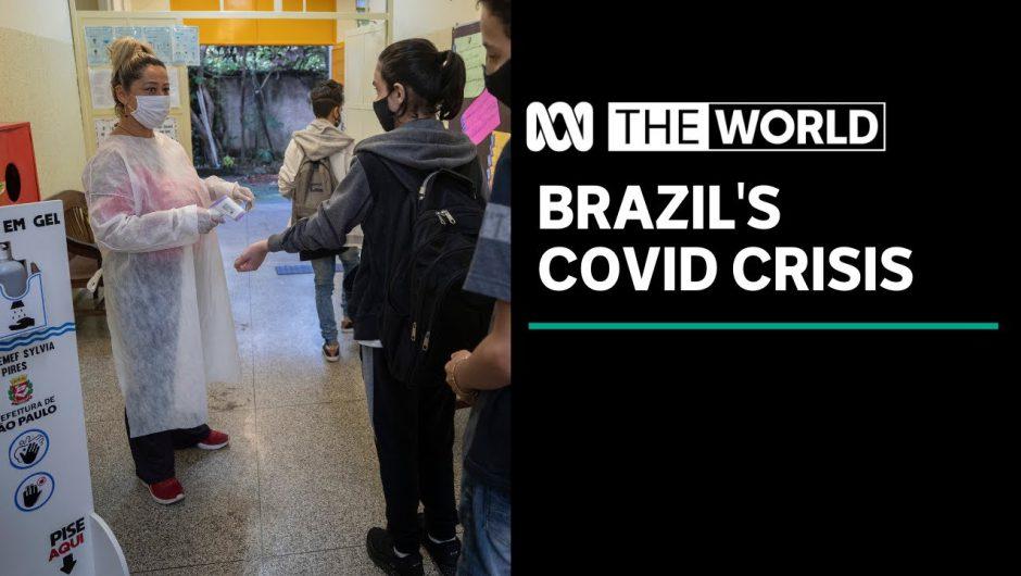 "Coronavirus pushes Brazil's healthcare system ""to breaking point"" | The World"