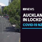 Unlinked coronavirus case prompts NZ to announce a week-long lockdown for Auckland | ABC News