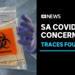 SA Health alarmed at COVID-19 traces in Adelaide wastewater | ABC News