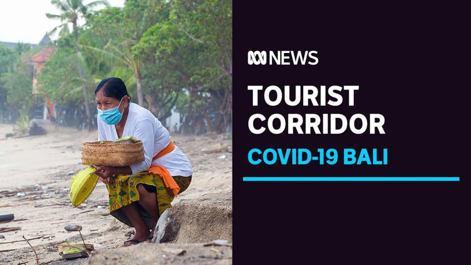 Vaccinated tourists could be welcomed back to Bali as COVID-19 threatens island's economy | ABC News