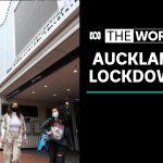 Auckland in lockdown after UK coronavirus variant detected | The World