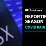 Profit reporting season reveals coronavirus pandemic pain or gain | The Business