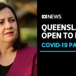 Queensland to open border to all of NSW next month as coronavirus threat eases | ABC News