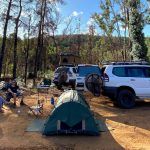 Coronavirus restrictions ease in Queensland despite new COVID-19 case, with no limits to camping ahead of Easter break