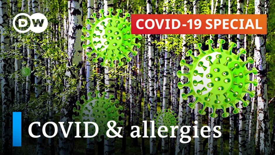 Can pollen increase COVID-19 infection rates? | COVID-19 Special