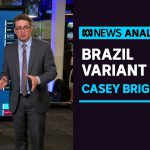 Casey Briggs looks at the impact of the latest coronavirus variant from Brazil | ABC News