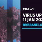 Coronavirus update 11 Jan — Brisbane lockdown to end after third day of zero new cases | ABC News