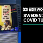 Sweden approves wider shutdown powers as it struggles to slow COVID-19 spread   The World